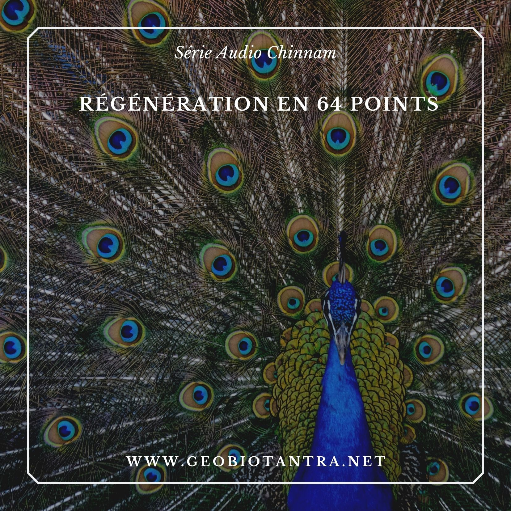 geobiotantra-boutique-serie-audio-meditation-guidee-regeneration-en-64-points